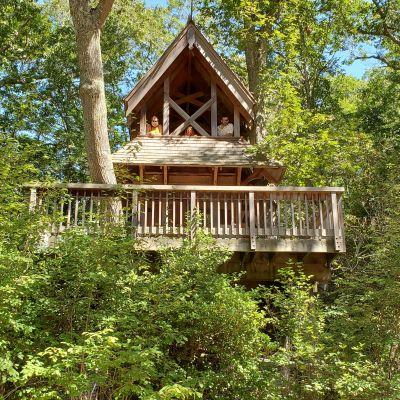 Hidden Hollow Tree House