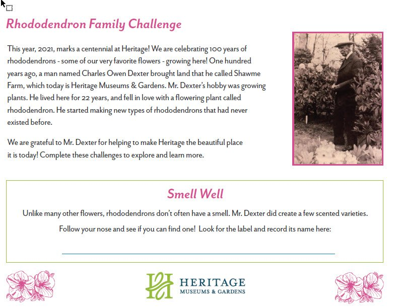 Rhododendron Family Challenge