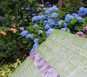 Hydrangea Test Garden