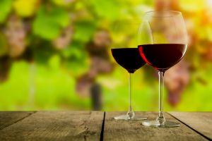 Wine in garden